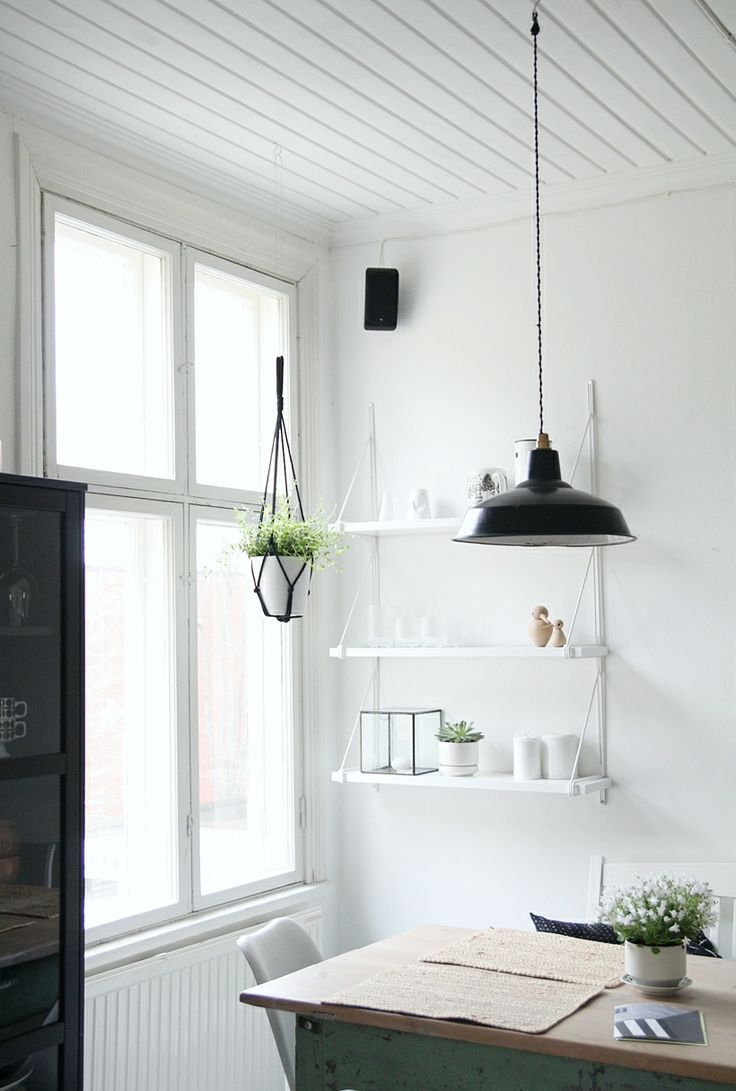 Kitchen Hanging Plant And Shelves