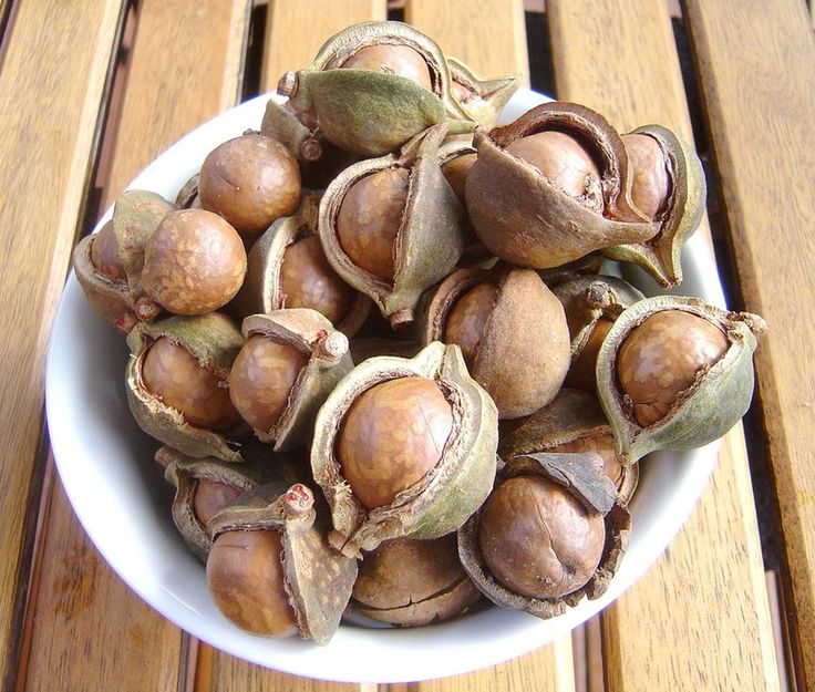 Why Macadamia Nut Oil Was The Skin Treatment I Gave My Mother After She Went Through Chemotheraphy