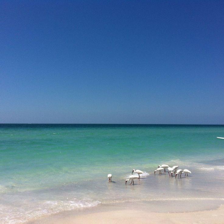 Kawaii Island Go Vacation: 277 Best Mermaids Crossing Beach Vacation Rental On Anna