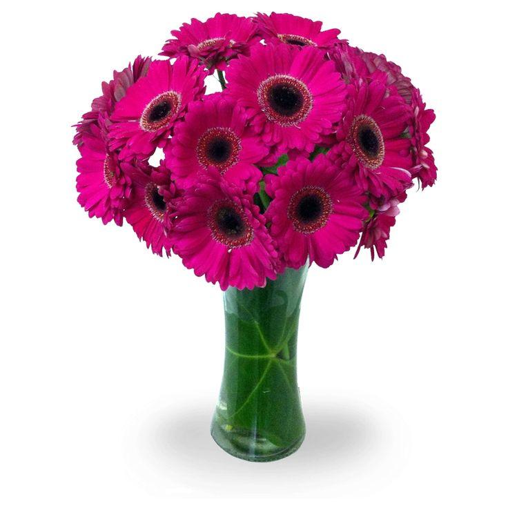 Gerberas rosadas para generar una linda sonrisa.