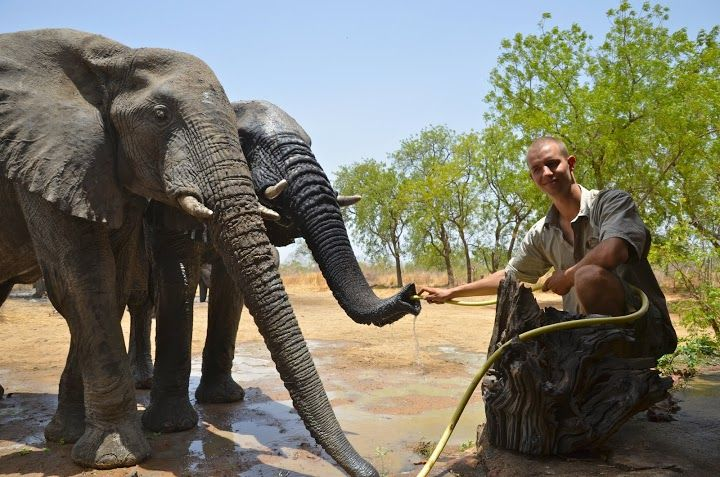 social .... btw- our friend Artur in action in Afrika :) He's the one, who decided to Save The Eelephants !