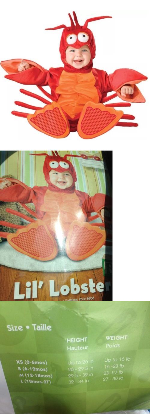 Kids Costumes: Incharacter Baby Lil Lobster Costume Size 18-24 Months Halloween Dress Up -> BUY IT NOW ONLY: $33.99 on eBay!