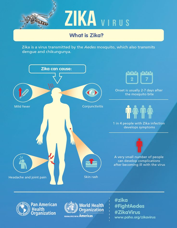 What is Zika virus? #science #health #zika