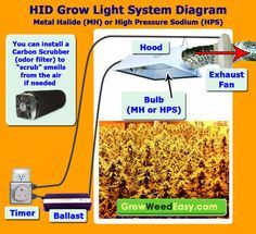 This HID Grow Light System Diagram explains all the components you need for a metal halide (MH) or high pressure sodium (HPS) grow light for growing marijuana