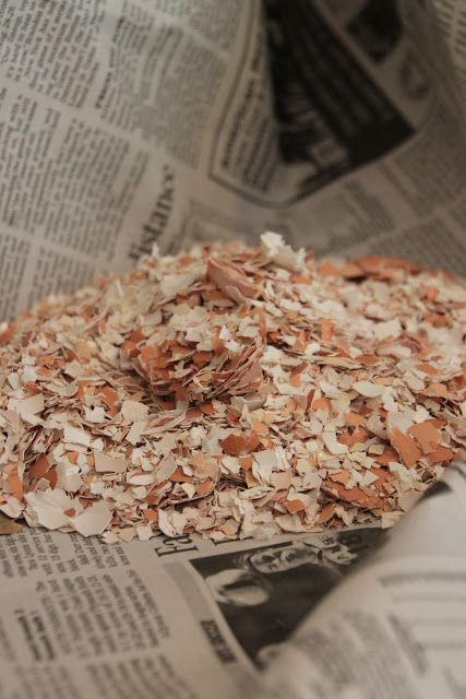 Feed your chickens' egg shells back to them for calcium. Post teaches you how.
