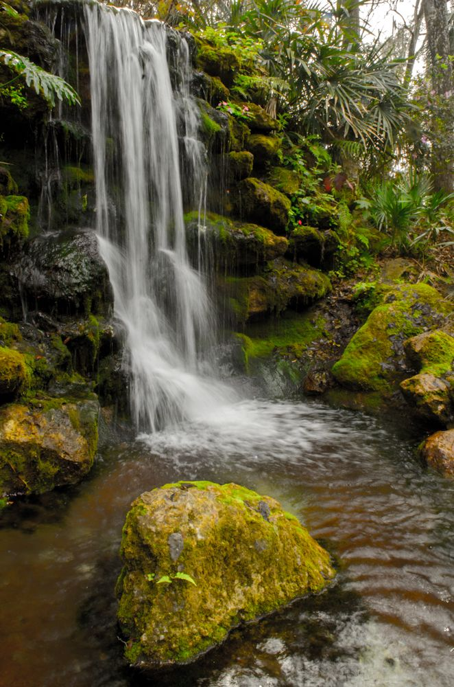 Rainbow Springs Is A Florida State Park That Was Once An