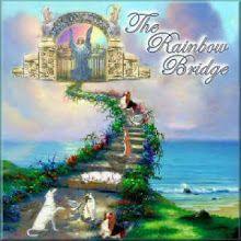 A Ponte do Arco - Íris