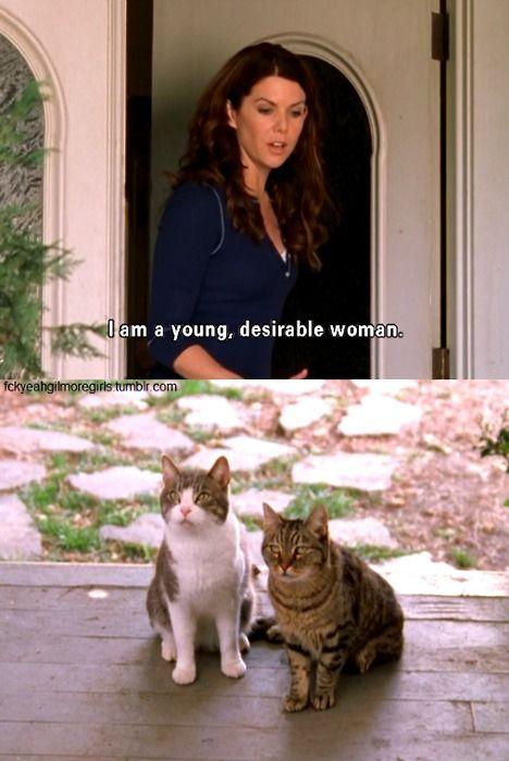 crazy cat lady!Desire Lorelai, Lorelai Cats Gilmore, Crazy Cats, Funny Cat, Lorelai Gilmore, Gilmore Girls Cats, Desire Woman Shoo, Crazy Cat Lady, Gilmore Girls Funny
