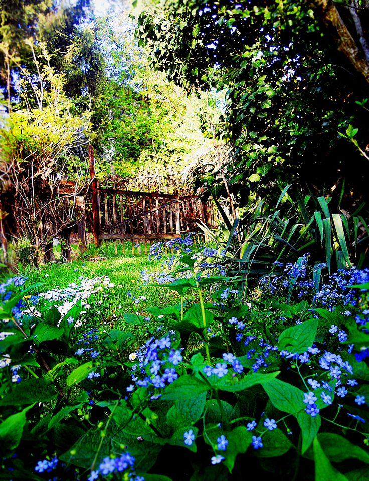 Garden Photo: Beata Bauer