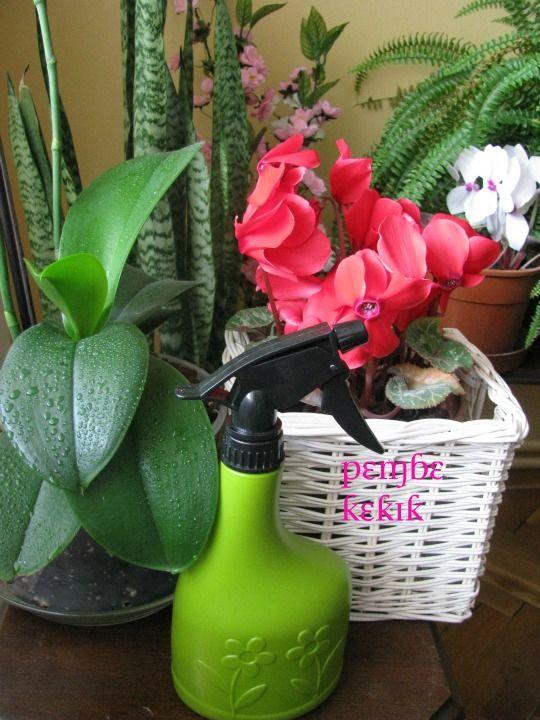 evde doğal oda parfümü nasıl yapılır ?