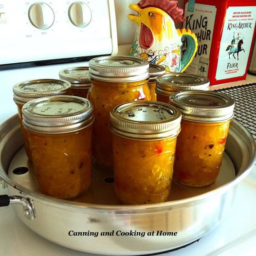 Vidalia Onion Relish - Canning and Cooking at Home