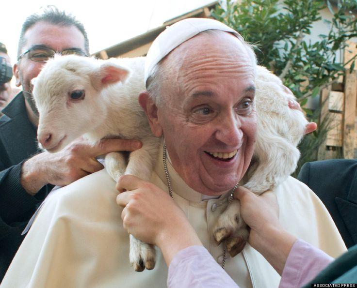 Epihanie 2014 des Pasteurs avec 'l'odeur de leurs brebis' Pape François et l'agneau - Pope Francis visits a living nativity scene staged at the St. Alfonso Maria de' Liguori parish church