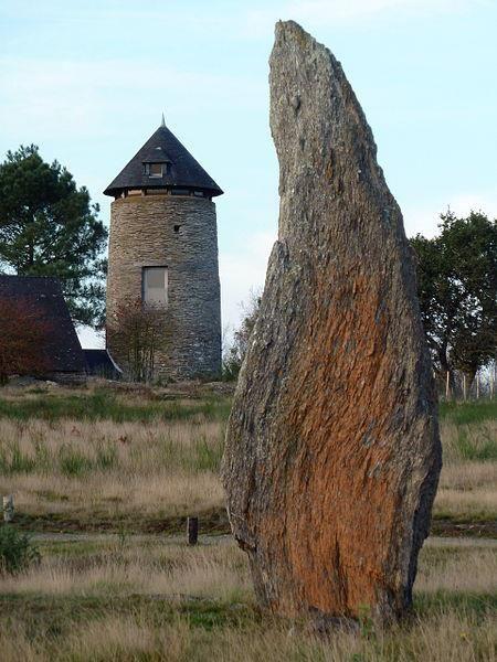Alignements-Landes de Cojoux , Saint-Just, Ille et Vilaine. France.