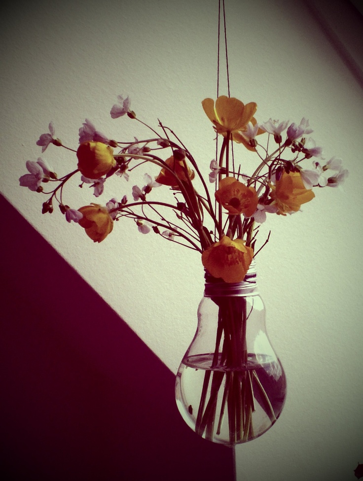 Our Kitchen Flowers