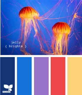 jellyfish color schemes