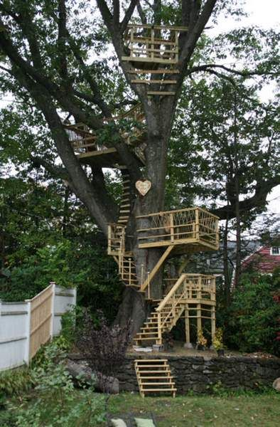Treehouse   A back yard for kids