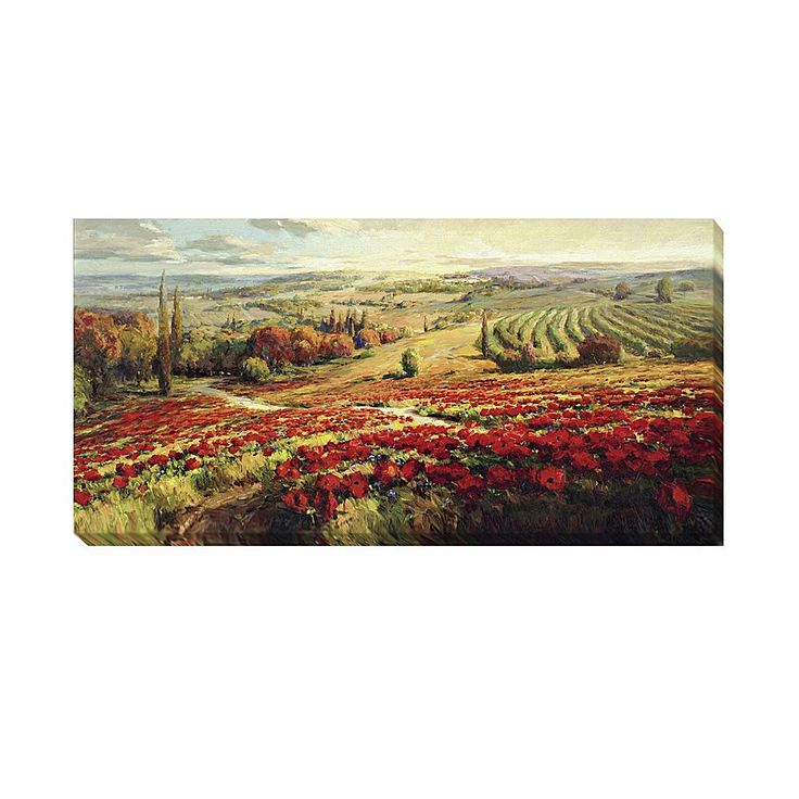 """Home Marketplace Roberto Lombardi """"Red Poppy Panorama"""" Gallery-Wrapped Giclée Canvas Wall Art - Small"""