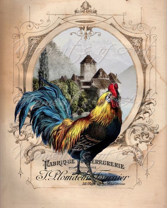 Colorful French Rooster 8x10 Print Kitchen Art by MomentsOfArt:
