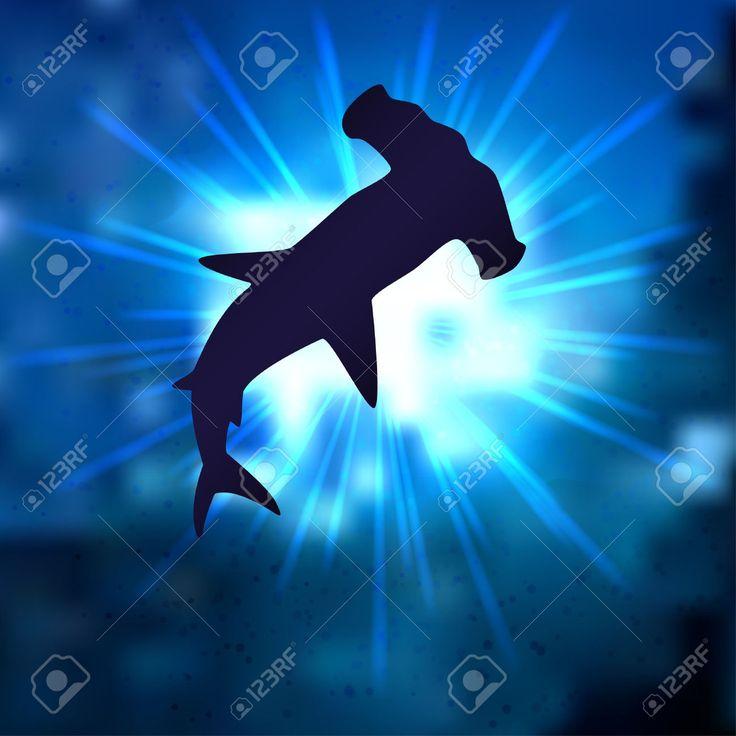 29305756-hammerhead-shark-Stock-Vector.jpg (1300×1300)