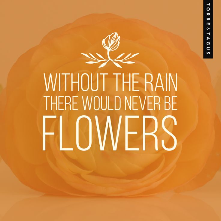Let's thank the rain for all the beautiful spring flowers! #TorreAndTagus #AprilQuote #HomeDecor www.torretagus.com
