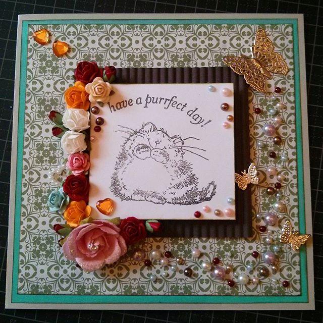 Have a purrfect day!  #cat #catstagram #scarpbooking #scrapagram #green #handmade #card #birthdaycard #summer #papercraft #papir