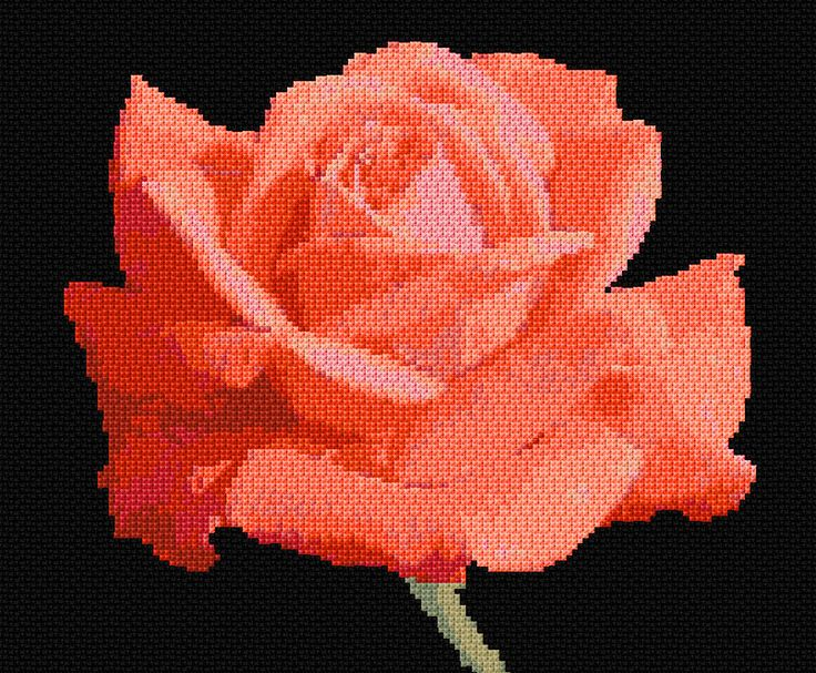 Cross Stitch | Rose 7 xstitch Chart | Design
