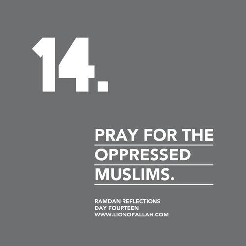 Ramadan Reflections: Day Fourteen