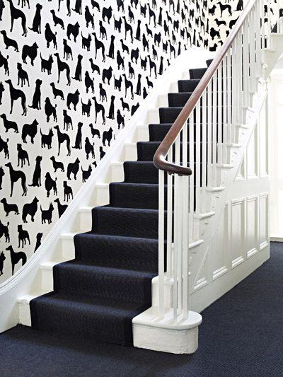 Dacă și tu visezi la pisici negre pe pereți...