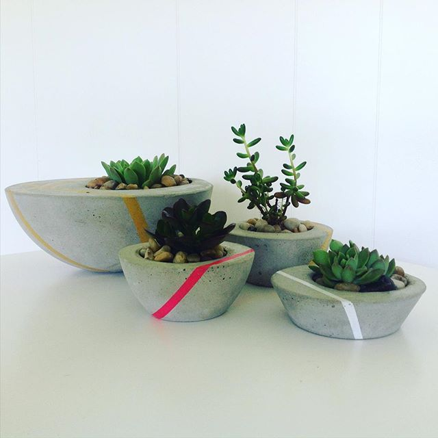 Looking for a last minute Xmas gift, succulents are super easy to look after & add a touch of life to any room... Find us tomorrow night at the Caloundra Twilight Markets.