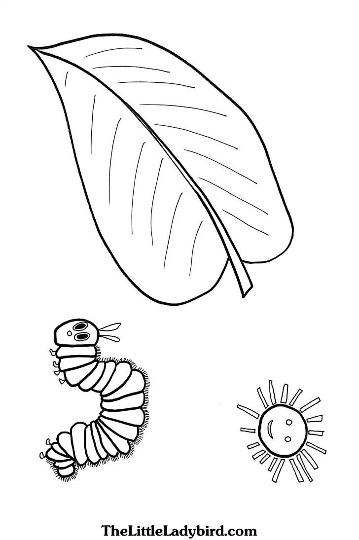- 25+ Awesome Picture Of Hungry Caterpillar Coloring Pages Very