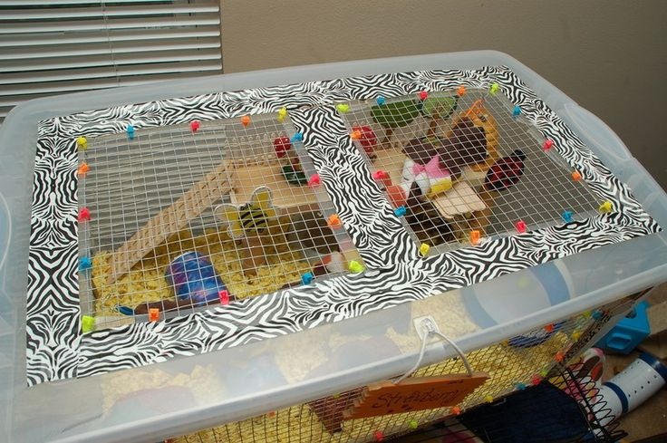 **This page was posted to spread the word on how you can make a bin cage but original credit for how to prettify it and the original look was based off a Hamster Central member: aka Gutterglitterxx…