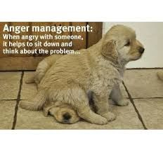 Anger-Test Yourself-Calm Down-Life is Short  http://science.howstuffworks.com/life/inside-the-mind/emotions/anger-quiz.htm#mkcpgn=em16  Like a Mellow Brit at https://www.facebook.com/orovalleyazrealestate