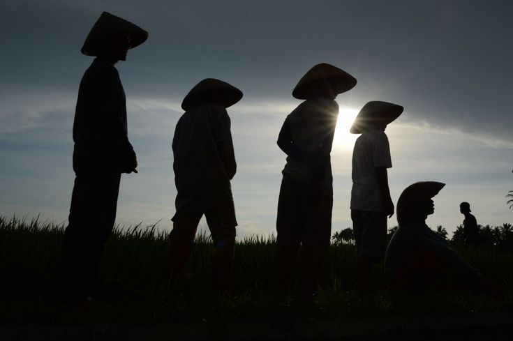 El día en imágenes | Fotogalería | Actualidad | EL PAÍS
