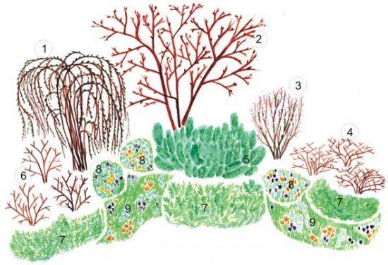 Декоративный сад весной