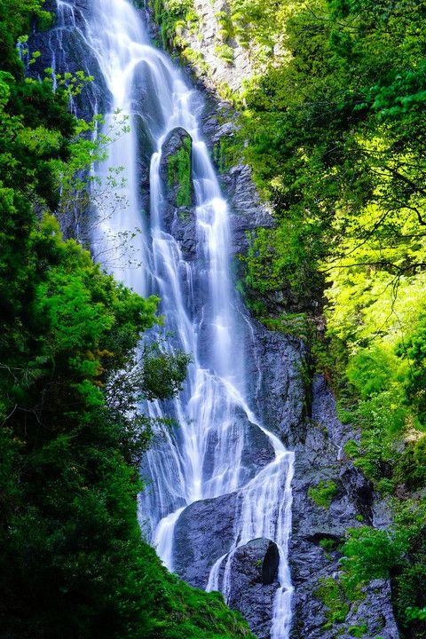 神庭の滝 Kanba Falls, Okayama, Japan via αcafe | My Sony Club | ソニー #緑 #Green