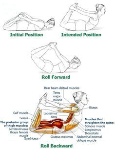 Exercises to Improve Your Posture and Bring Relief to Your Back & Spine, Part 7