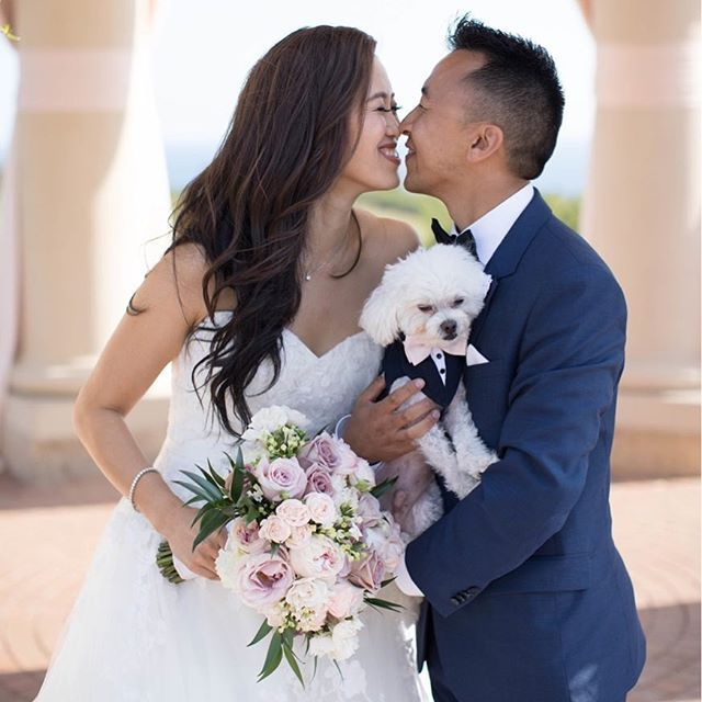 When it becomes a little more than puppy love... #PelicanHillWeddings #EveryDayIsAWeddingDay  Design|Planning|Production: @agoodaffair @agoodaffairjanel #agoodaffairdesign   Venue: @pelicanhillresort @pelicanhillweddings   Photo: @janawilliamsphotos_  Floral Design: @nisiesenchanted   Hair and Make-Up: @kellyzhangstudio