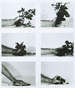 Dennis Oppenheim. Compression - Poison Oak, 1970
