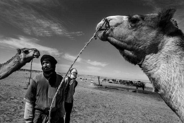 """"""";A veces, es complicado que estética, derechos humanos y fotografía vayan de la mano. Con mi participación en la iniciativa de Red Acoge -escribe Luis de Vega-, de alguna manera, quería que el que adquiera esta foto, al menos se lleve algo de belleza y algo de compromiso. Elegí esta imagen del Sahara Occidental porque sigue siendo una asignatura pendiente para los periodistas, y más si somos españoles. Y dentro de ese conflicto, es una fotografía alejada de los campamentos de…"""