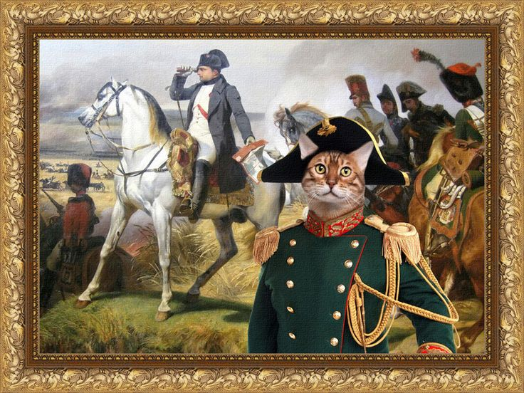 Prints on Canvas – Bengal Cat Fine Art Canvas Tabby Cat – a unique product by NobilityCatsandPets on DaWanda