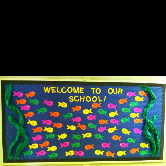 17 best ideas about fish bulletin boards on pinterest for Fish bulletin board