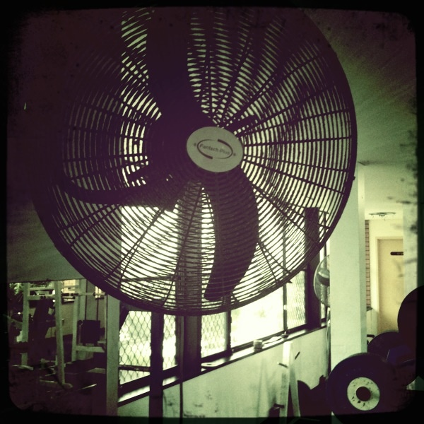 Gym fan, Tweed Heads
