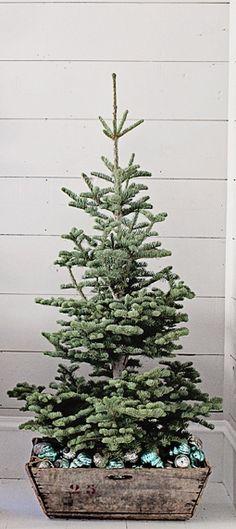 a simple Christmas tree