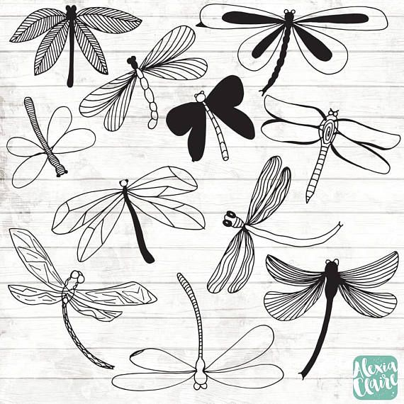 Dragonfly Clipart – 11 Hand Drawn Dragonfly Cliparts – Bugs Logo Art – Bugs Logo Elements – Dragonfly Illustration – 128
