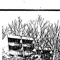 05 Mar 1982 - Housing loans decline 28pc