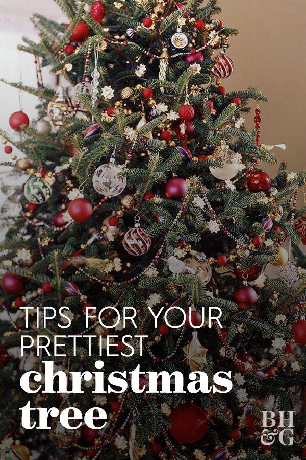 Tips For Prettier Christmas Trees Pretty Christmas Trees Christmas Tree Decorating Tips Christmas Tree