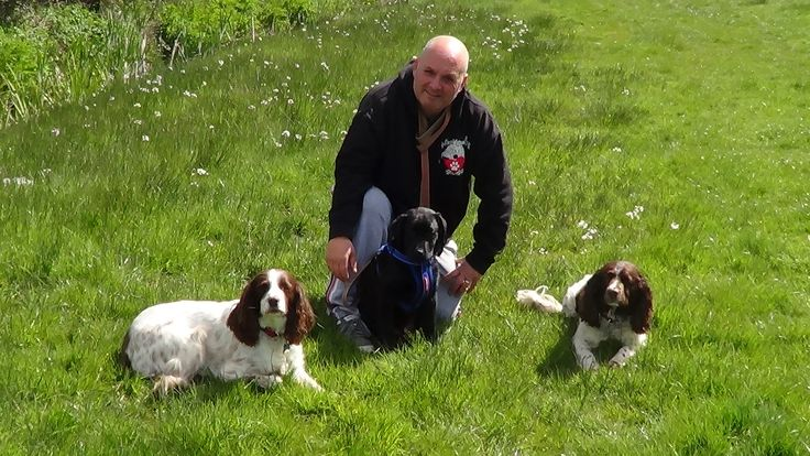 Affectionately Paws:Billy professional Dog trainer Puppy trainer Dog walker In Hartley Wintney