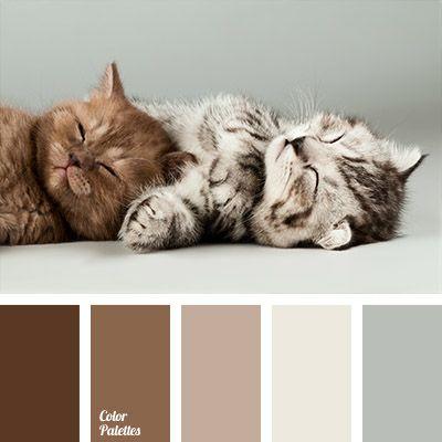 Color Palette #832 | Color Palette Ideas