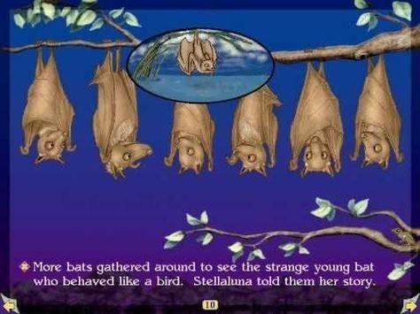 Stellaluna - Read by Pamela Reed