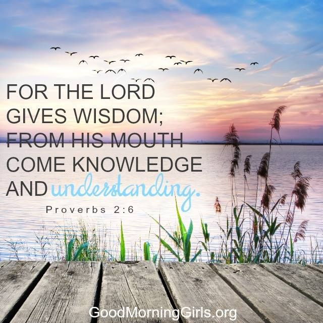 For the Lord gives wisdom; from His mouth com knowledge and understanding. Proverbs 2:6